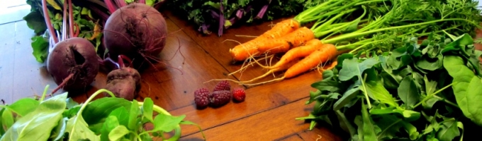 Grupo a Grupo: portal on-line para grupos de consumo y productores ecológicos
