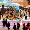 Fitur y la no presencia del Turismo Colaborativo