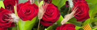 Recomendaciones para Sant Jordi: el Día mundial del libro (y de los derechos de autor)
